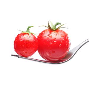 Le Basi della Dieta