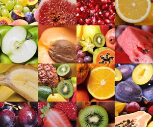 Origini e Tipologie di Dieta Vegetariana