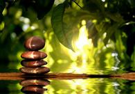 Gli Otto Stadi dello Yoga